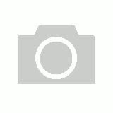 Seven Complete Skateboard 7.25 Basic Logo Teal